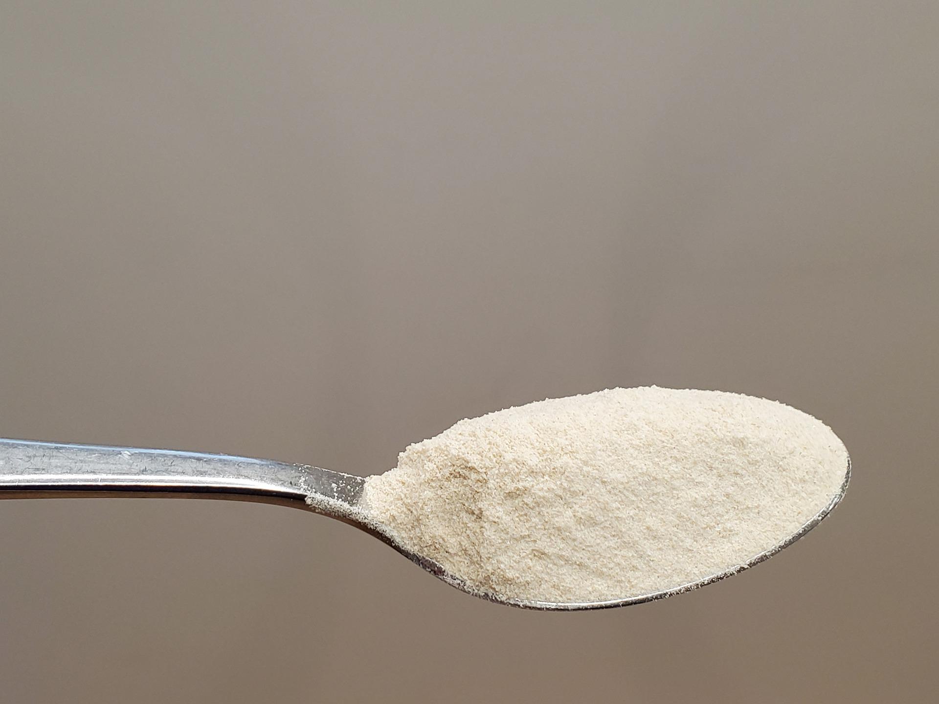 Psyllium en polvo